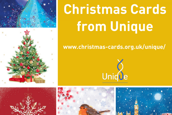 Our new selection of Christmas Cards, featuringChristmas on the Thames, Gardeners Friend (Robin), Snowflake, Mother & Child and a Traditional Christmas Tree